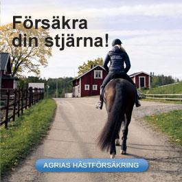 Försäkra din häst med Agria Djurförsäkring