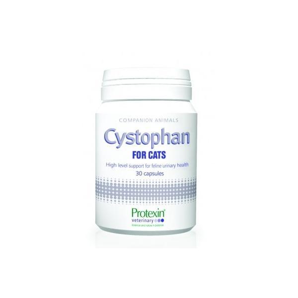Cystophan för katter