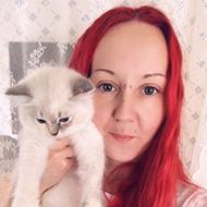 Josephines kattblogg